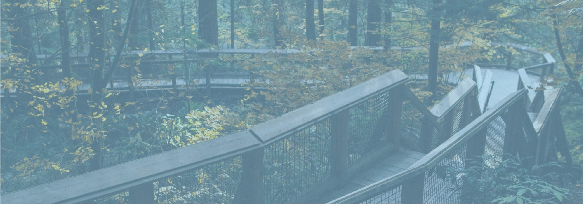 Bridge Suspension Project for Porcupine Mountains at MKC Group